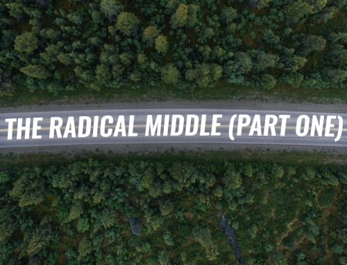 The Radical Middle (Part One)